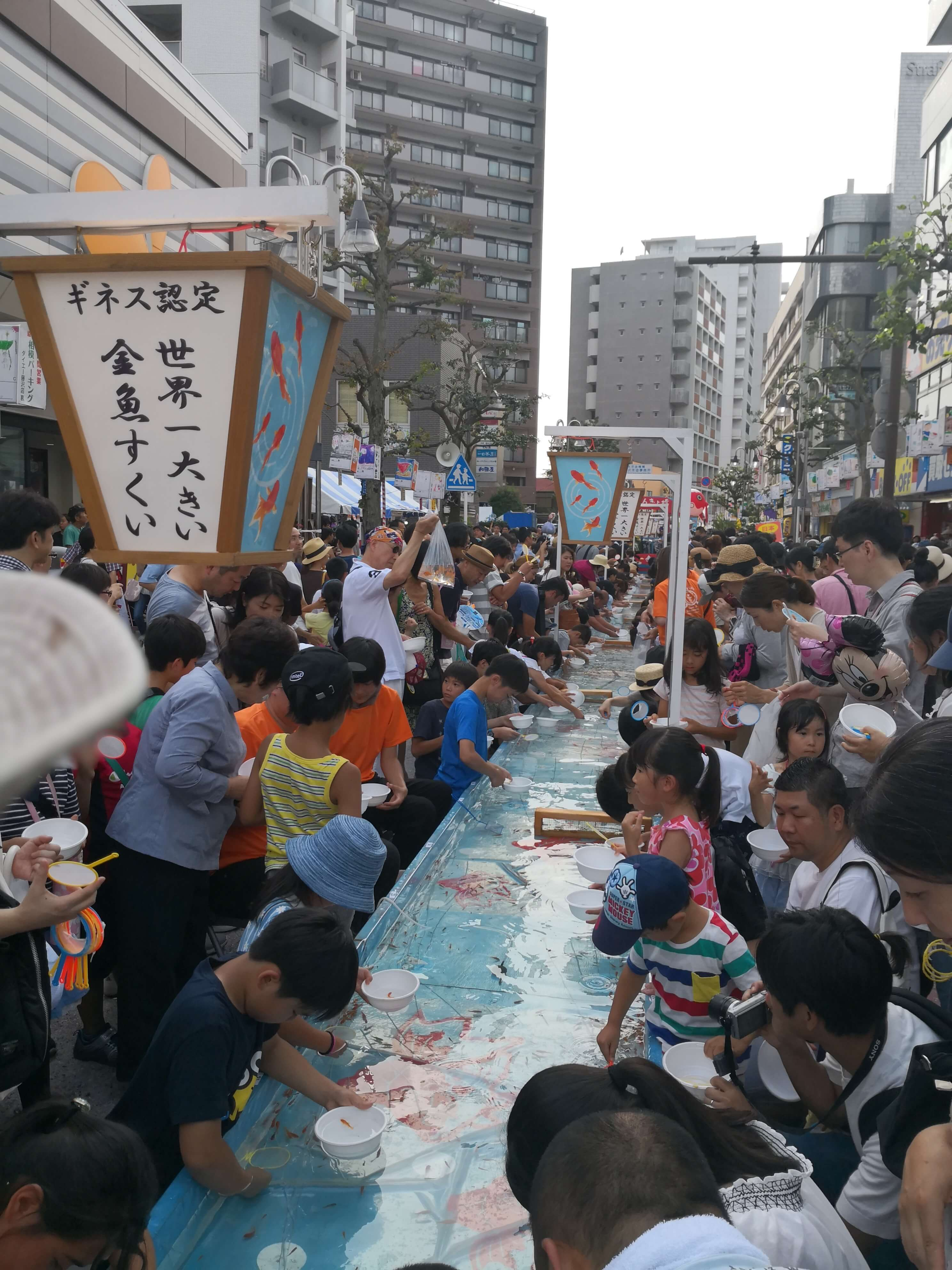 ギネス認定❓世界一大きい金魚すくい❓藤沢。口コミandレビュー