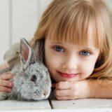 ウサギの行動・仕草。レビュー&口コミ